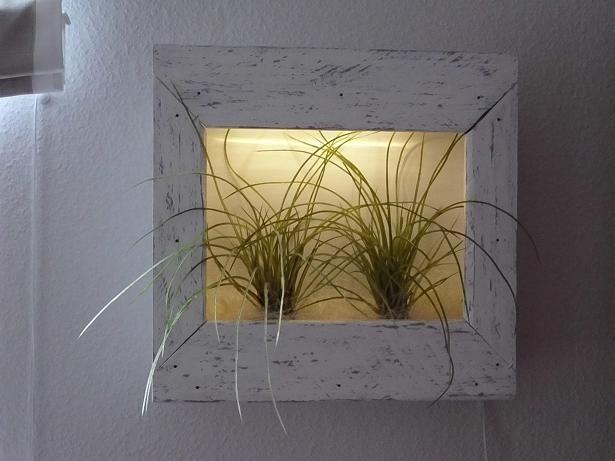 holzwurm kreatives f r haus und garten beleuchteter pflanzrahmen regal. Black Bedroom Furniture Sets. Home Design Ideas